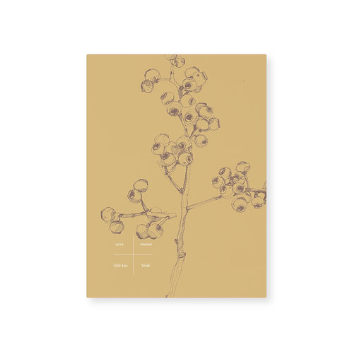 Card (5pcs) / Yellow berry