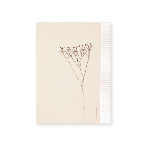 Card (5pcs) / Umbel*)