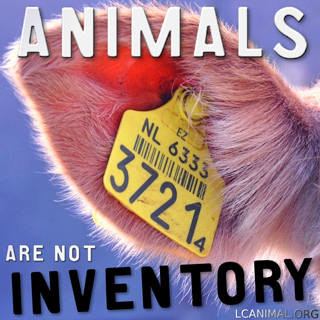 Animals are not Inventory