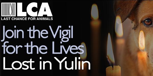 Yulin Vigil