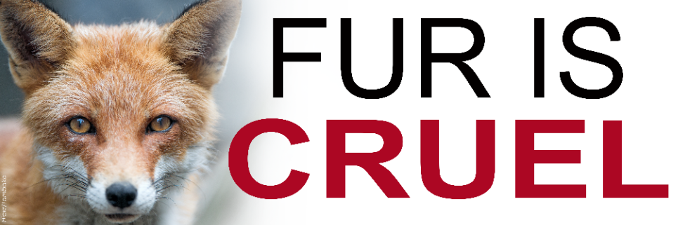 Fur is Cruel