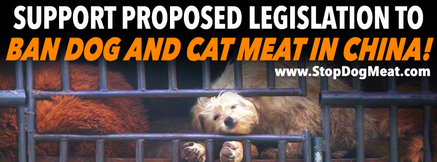 Dog Meat Legislation