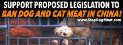 Dog Meat Legislation