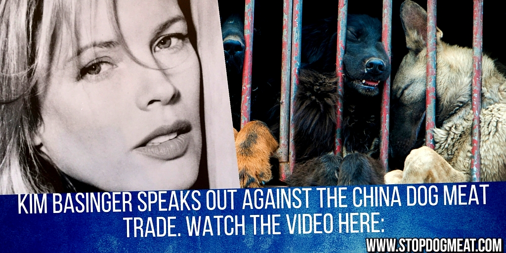 Kim Basinger speaks out against the dog meat trade