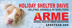 ARME Holiday Banner
