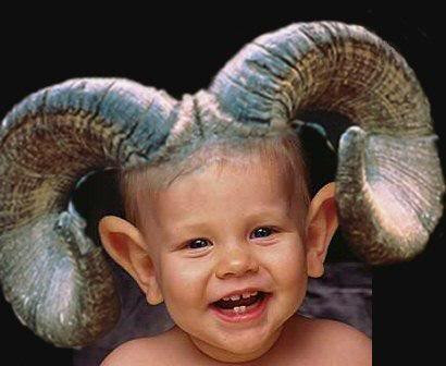 Aries is the baby ram of the Zodiac