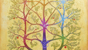 Human Being as a Tree of the Field