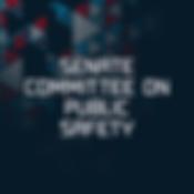 sENATE PUBLIC SAFETY.png