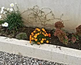 Friedhofsverwaltung St.M (1).jpg