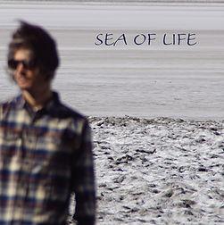 hubertus sea of life.jpg
