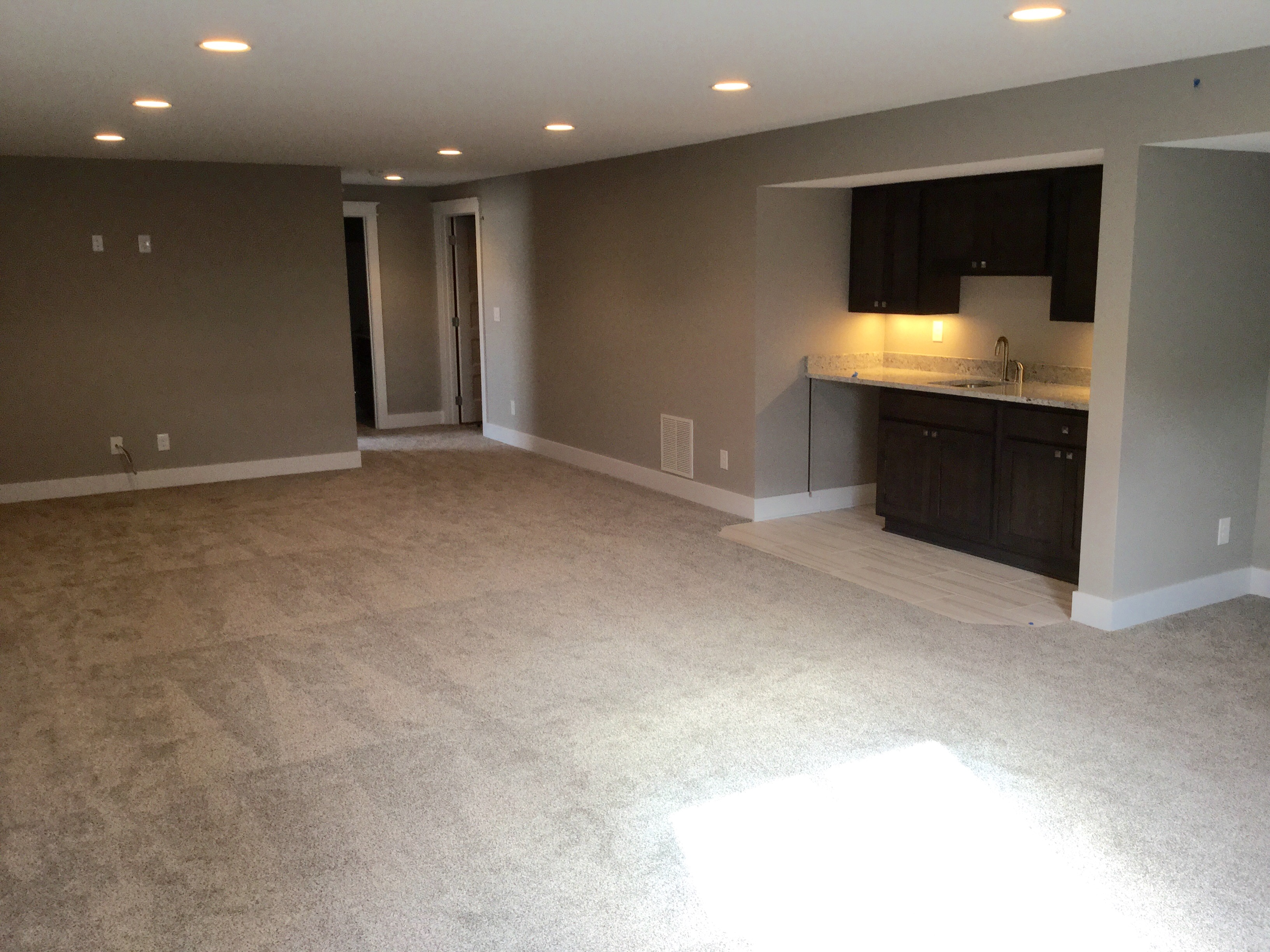 Cottonwood Basement Living Space