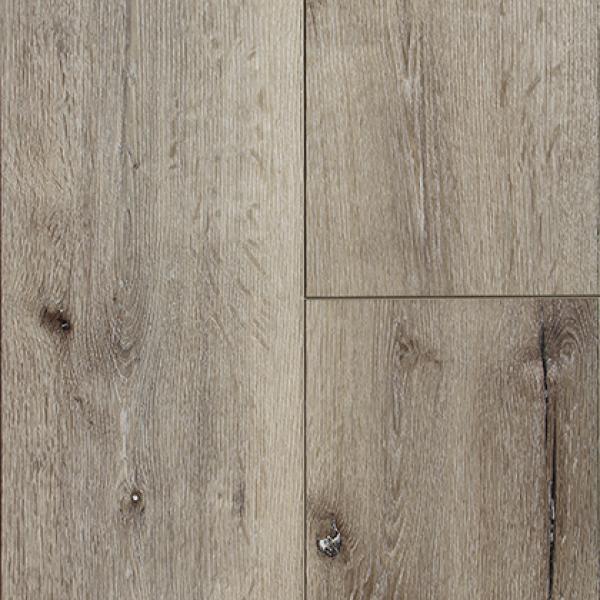 finnish pine.jpg