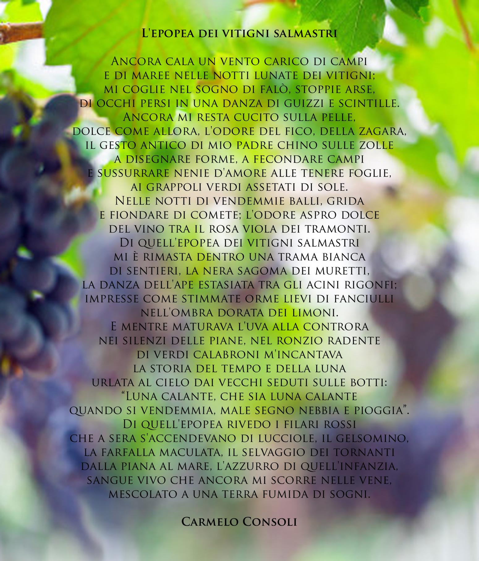 L'epopea dei vitigni salmastri def