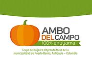 LOGO DE AMBO.png