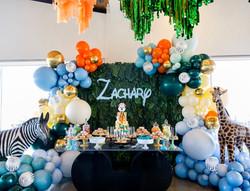 zachary1stbirthday