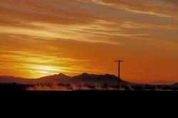 sunrise with irr