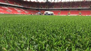 Tips for Sports Fields lawn maintenance