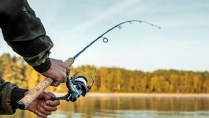 Beginner's Guide to Fishing
