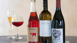 Beginner's Guide to Natural Wine