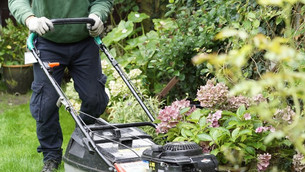 Are Garden Maintenance Services Necessary?