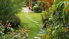 Tips to Help You Hire the Best Gardening Services