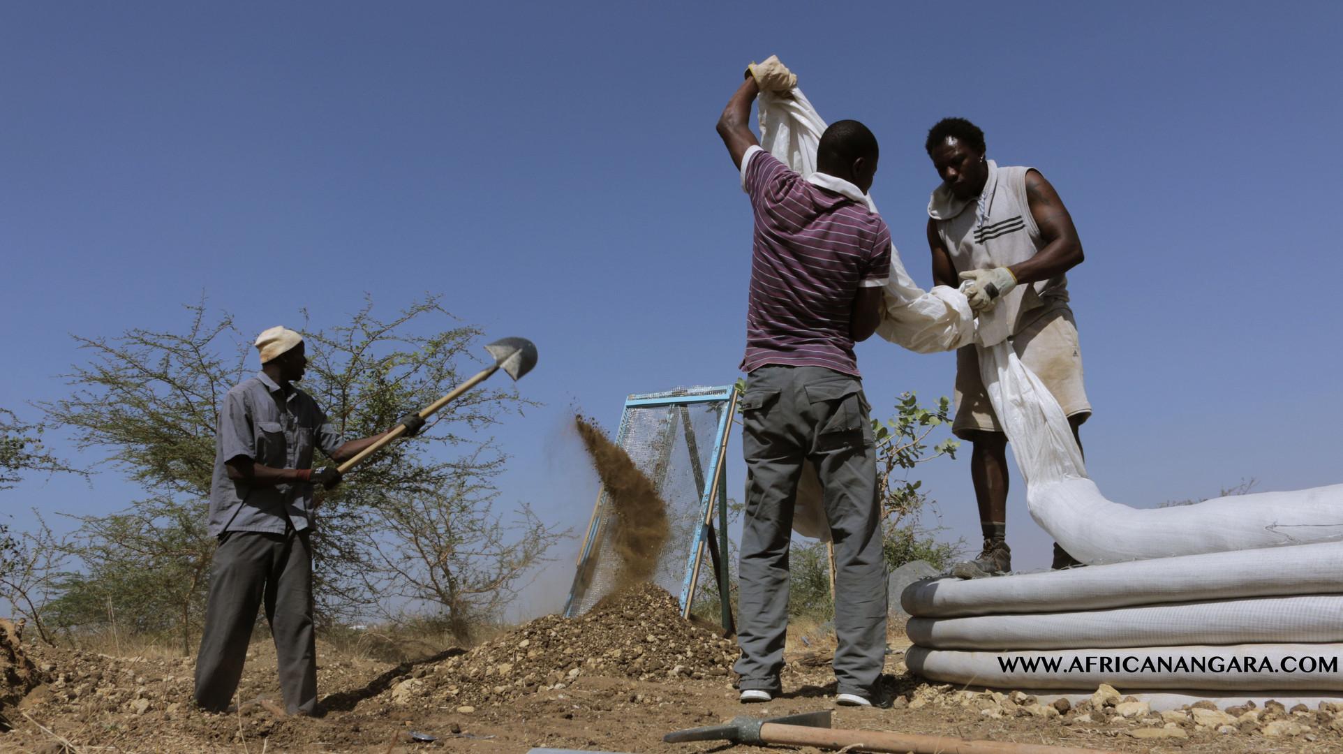 formación african angara
