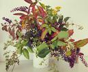 italian foraged floral