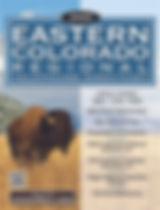 ECR20_Cover website.jpg
