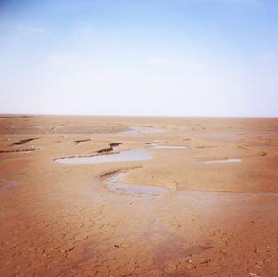 mud flats at rspb snettisham