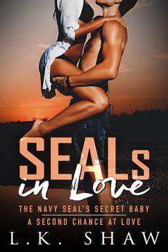 SEALs in Love ebook.jpg