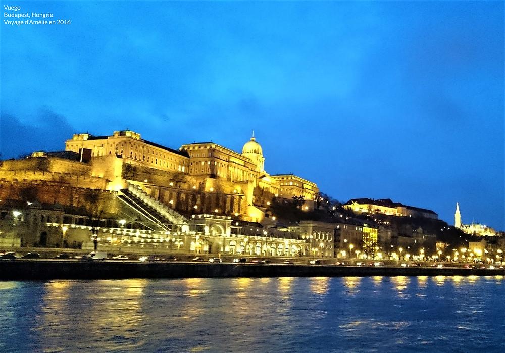 Château de Buda à Budapest de nuit en Hongrie