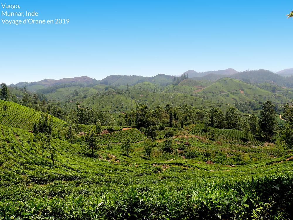 Munar, Kerala, Inde