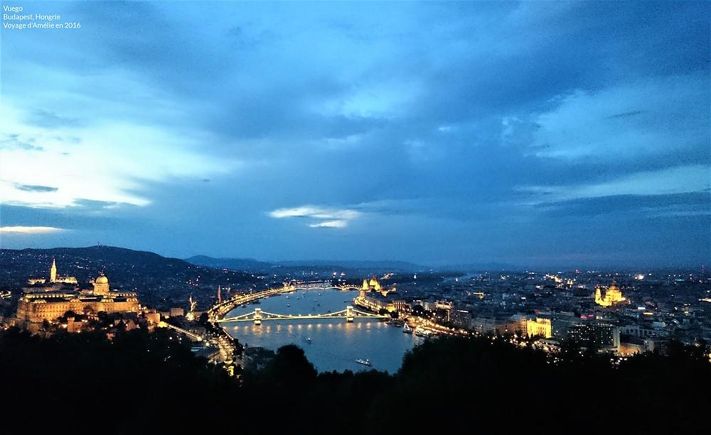 Vue de Budapest de nuit en Hongrie avec le Pont, le Parlement et le château