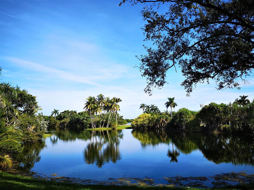 Voyage en Floride, Etats-Unis