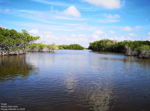 Les Everglades