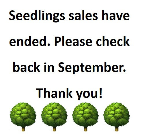 Seedling Sales Update