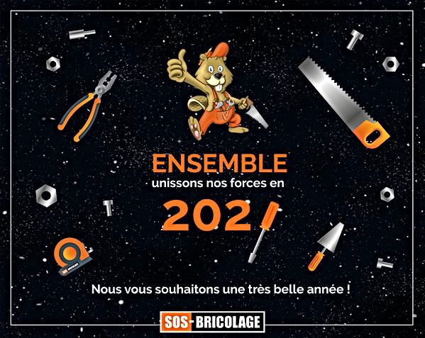 voeux pour 2021.png