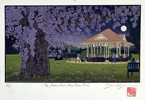 'The Moon Over New Farm Park'