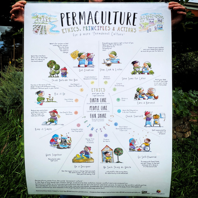 Permaculture Principles A1 Poster - $30