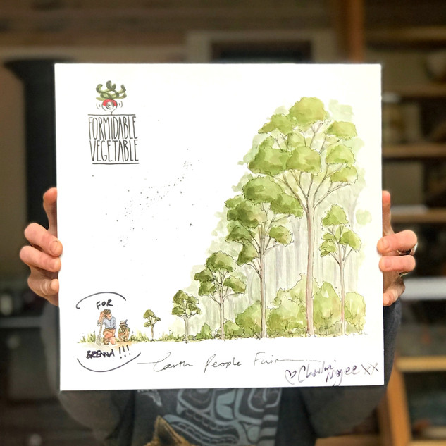 Earth, People Fair Album/Vinyl - $12 - $40