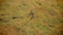 Screen Shot 2018-10-13 at 5.41.24 PM.png