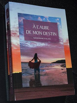 A l'aube de mon Destin - Livre 1 - Numérique
