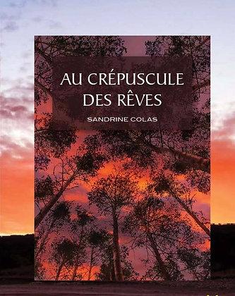 Au crépuscule des Rêves - Livre 5 (suite d'Un jour, peut-être...) 374 pages