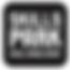 Skillspark-Logo-NEW.png