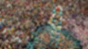 human-6.jpg