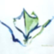 Green-canoe-sketch.jpg