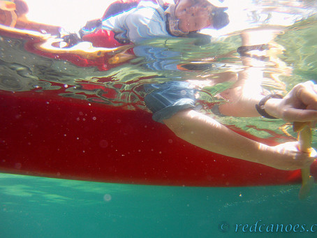 #28 Paddling Pic: Down Under