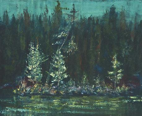 0039 Untitled Boreal Shoreline I -unsigned