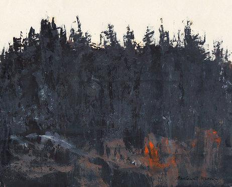 0098 Untitled Black Spruce III  - signed