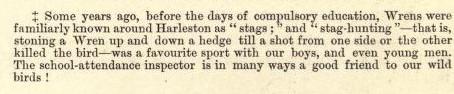 Hunting the Wren 3 : Harleston